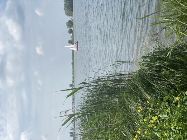 Aan de wind in Stadshagen